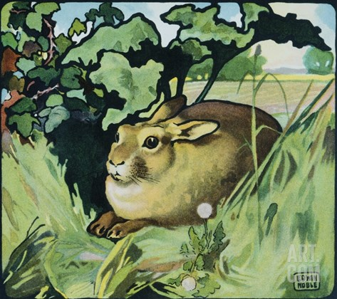 Illustration of a Resting Rabbit by Edwin Noble Stretched Canvas Print