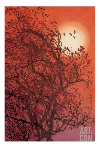 Red Sunset II Stretched Canvas Print