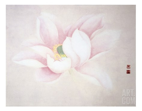 Lotus Stretched Canvas Print