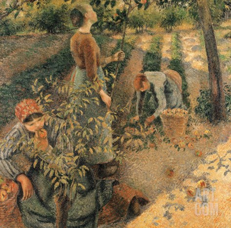 The Apple Pickers, 1886 Stretched Canvas Print
