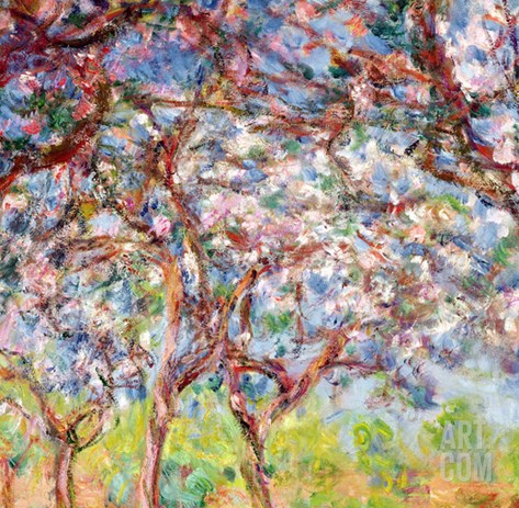Printemps a Giverny, 1903 Stretched Canvas Print
