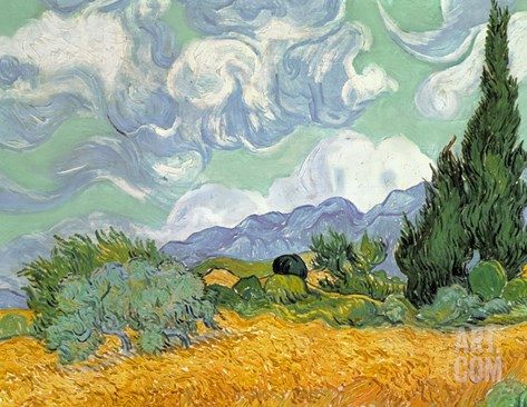 Wheatfield with Cypresses, 1889 (Oil on Canvas) Stretched Canvas Print