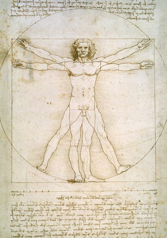Vitruvian Man, c.1492 Stretched Canvas Print
