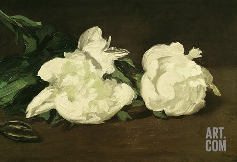Branch of White Peonies and Secateurs, 1864 Stretched Canvas Print