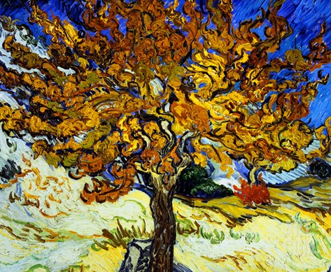 Mulberry Tree, c.1889 Stretched Canvas Print