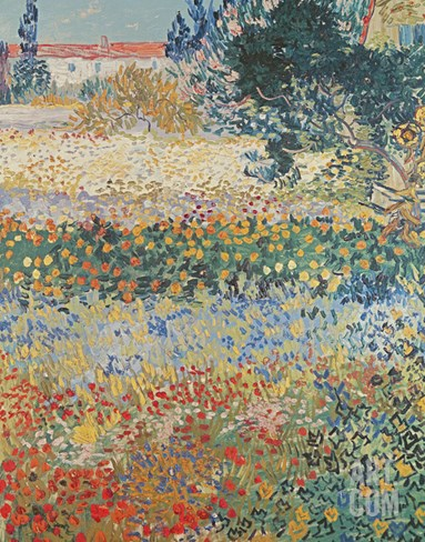 Garden in Bloom, Arles, c.1888 Stretched Canvas Print