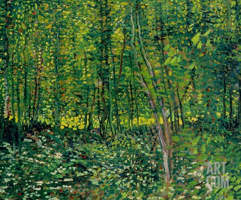 Woods and Undergrowth, c.1887 Stretched Canvas Print