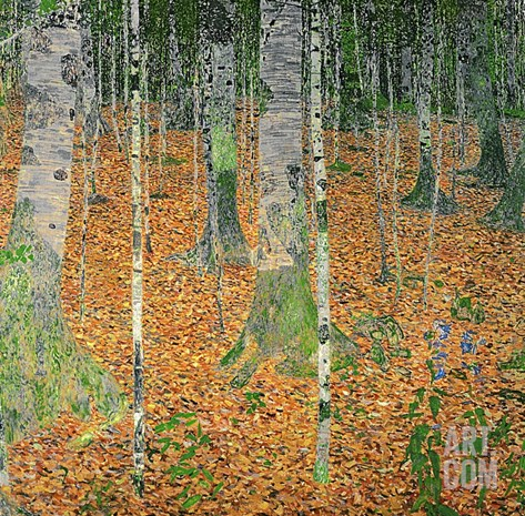 The Birch Wood, 1903 (Oil on Canvas) Stretched Canvas Print