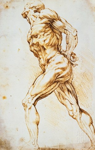 Anatomical Study: A Nude Striding to the Right His Hands Behind His Back Stretched Canvas Print