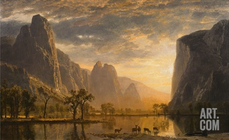 Valley of the Yosemite Stretched Canvas Print
