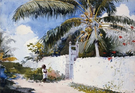 A Garden in Nassau, 1885 Stretched Canvas Print