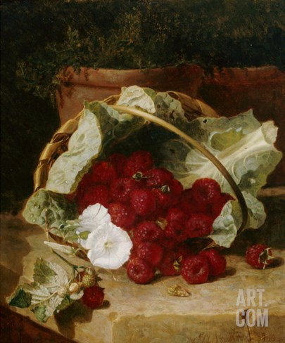Raspberries in a Cabbage Leaf Lined Basket with White Convulus on a Stone Ledge, 1880 Stretched Canvas Print