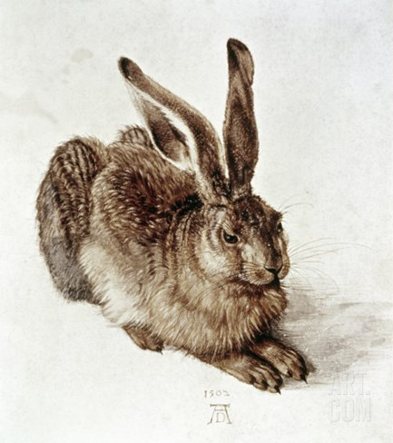 The Young Hare Stretched Canvas Print