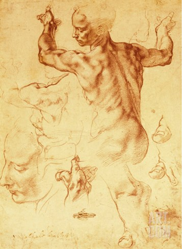 Anatomy Sketches (Libyan Sibyl) Stretched Canvas Print