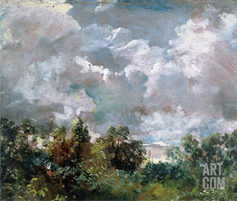 Study of Sky and Trees Stretched Canvas Print