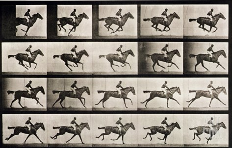 """Jockey on a Galloping Horse, Plate 627 from """"Animal Locomotion,"""" 1887 Stretched Canvas Print"""