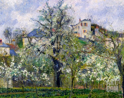The Vegetable Garden with Trees in Blossom, Spring, Pontoise, 1877 Stretched Canvas Print