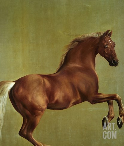 Whistlejacket, 1762 Stretched Canvas Print