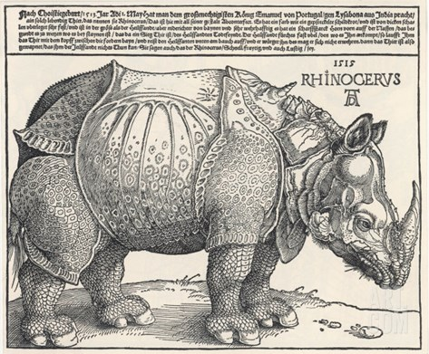 The Indian Rhinoceros is the Largest of the Asian Spiecies Stretched Canvas Print