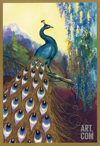 Ornamental Peacock Stretched Canvas Print