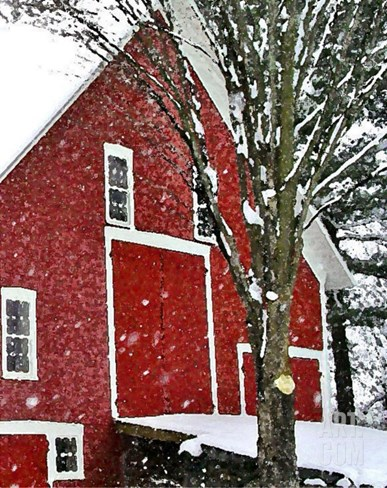 Snowstorm at the Red Barn Stretched Canvas Print