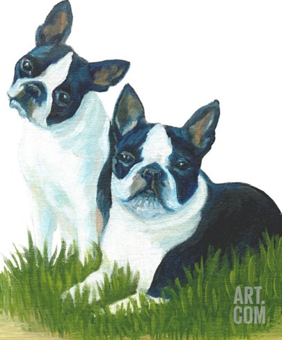 Two Are Better Than One - Boston Terriers Stretched Canvas Print