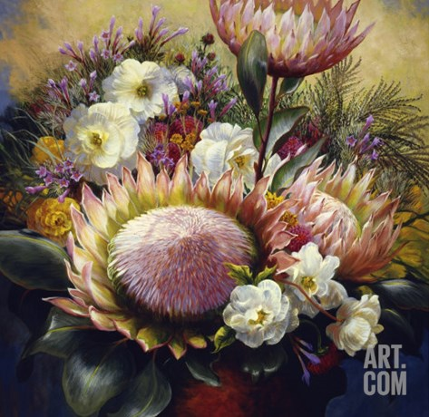 Still Life with Protea Stretched Canvas Print