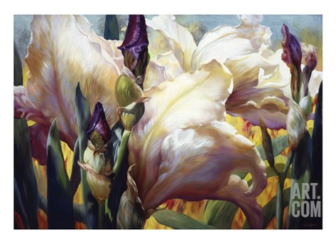 Iris Garden Stretched Canvas Print