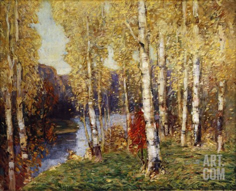 Birches Stretched Canvas Print