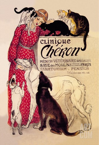 Clinique Cheron, Veterinary Medicine and Hotel Stretched Canvas Print