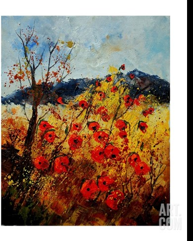 Red Poppies in Provence 45 Stretched Canvas Print