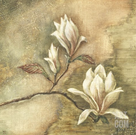 Burlap Magnolia I Stretched Canvas Print