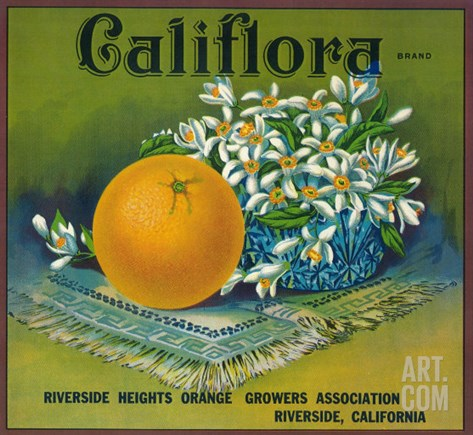 Califlora Orange Label - Riverside, CA Stretched Canvas Print