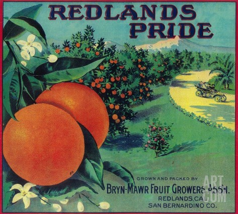 Redlands Pride Orange Label - Redlands, CA Stretched Canvas Print