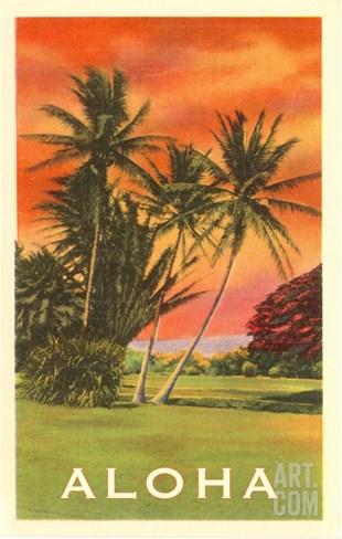 Aloha: Palm Trees Stretched Canvas Print