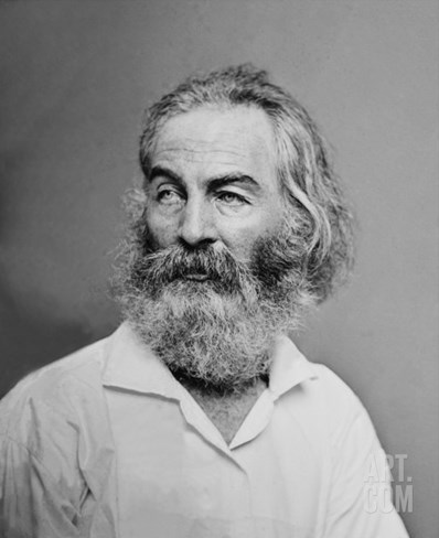 Walt Whitman American Poet, Author, and Journalist in Portrait from Mathew Brady Studio, 1863 Stretched Canvas Print
