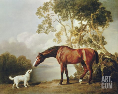 Bay Horse and White Dog Stretched Canvas Print