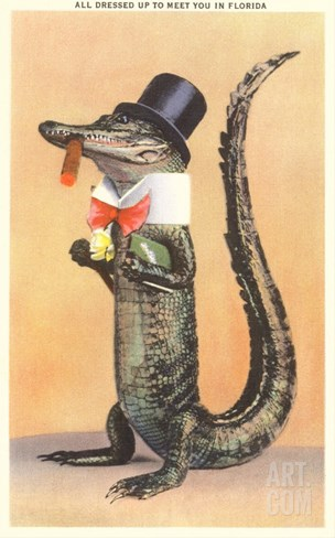 Alligator in Top Hat Stretched Canvas Print