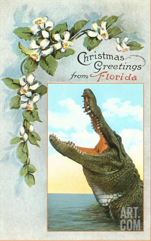 Christmas Greetings from Florida, Alligator Stretched Canvas Print