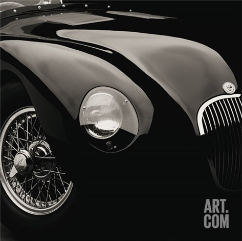 Jaguar C-Type Stretched Canvas Print