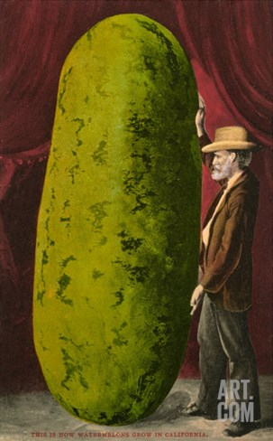 Man with Giant Watermelon Stretched Canvas Print