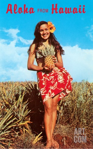 Aloha from Hawaii, Girl with Pineapple in Field Stretched Canvas Print