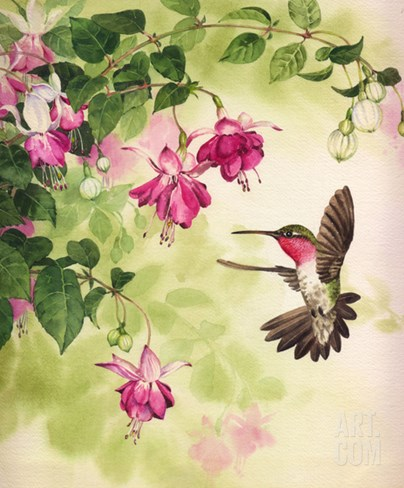 Hummingbird with Flowers Stretched Canvas Print