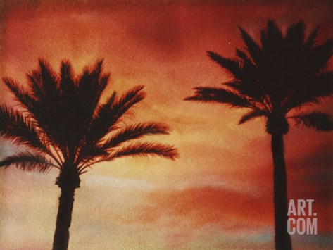 Palm Trees with Sun Stretched Canvas Print