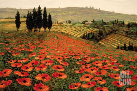 Hills of Tuscany I Stretched Canvas Print