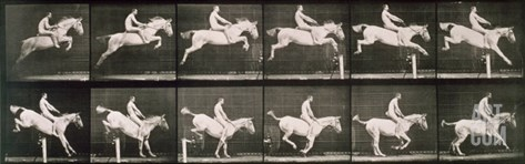 Man and horse jumping a fence, plate 643 from 'Animal Locomotion', 1887 Stretched Canvas Print