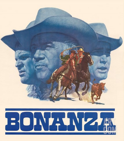 Bonanza Stretched Canvas Print