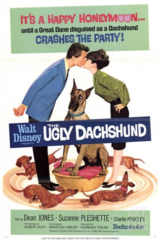 The Ugly Dachshund, 1966 Stretched Canvas Print