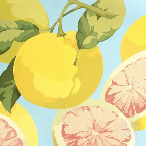 Fresh Grapefruits Stretched Canvas Print