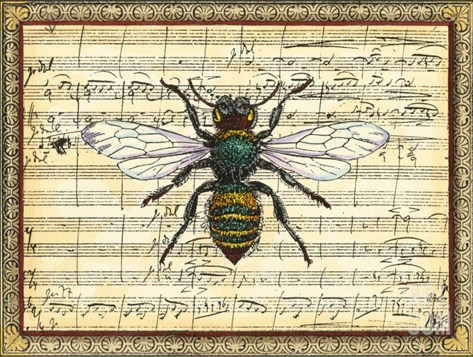 Bumblebee Harmony I Stretched Canvas Print